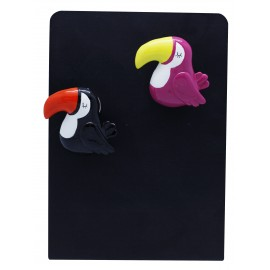 Toucan magnet with clip